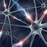 Cross Neural Programimng