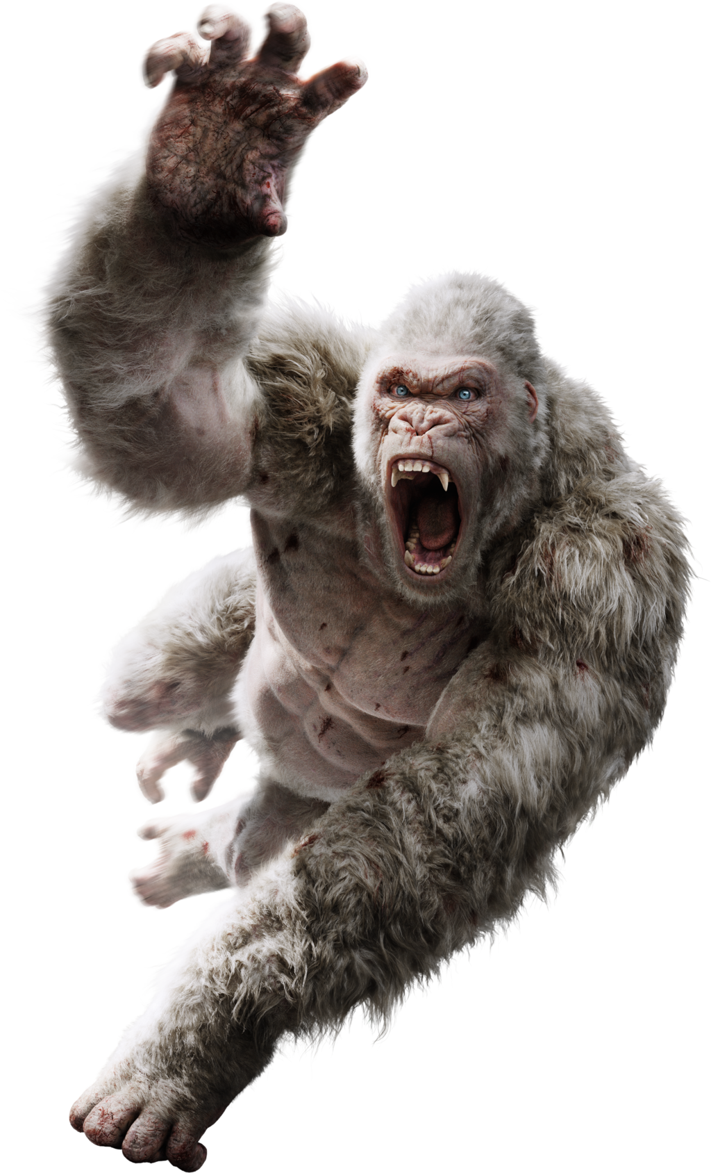 Monkey Shichen